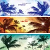 Coconut elements banner vector 02
