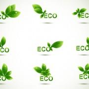 Link toEco elements vector set 04
