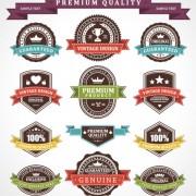 Link toSet of vintage business labels vector 02