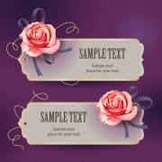 Link toElements of vintage romantic roses cards vector 02