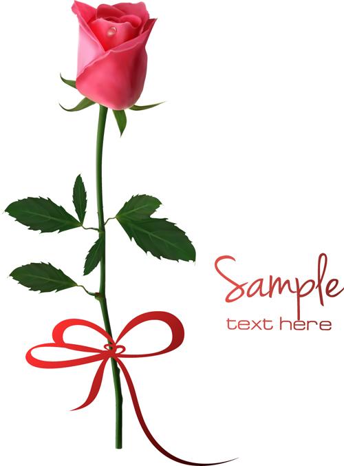Rose Vector Art