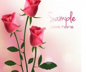 Set of Pretty rose elements vector 03