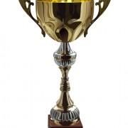 Link toTrophy cup and medals vector set 01