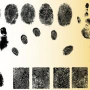 Link toSet of fingerprint identification vector 01