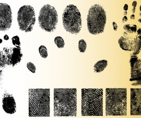 Set of Fingerprint identification vector 01