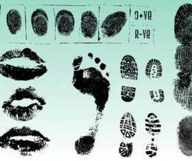 Set of Fingerprint identification vector 02