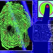Link toSet of fingerprint identification vector 05