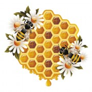 Link toElements of honey and bees vector set 01