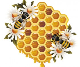 Elements of Honey and Bees vector set 01