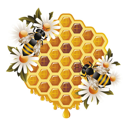Elements Of Honey And Bees Vector Set 01 Vector Animal