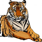 Link toSet of tiger elements vector 05