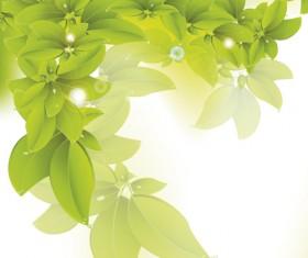 Different leaves design elements vector 04