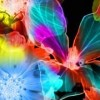 Colorful Flower Brush for Photoshop