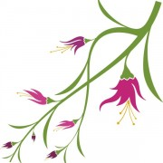 Link toVivid with flower elements vector graphics