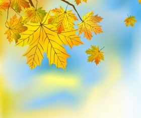 Fall of Maple Leaf elements background vector 03