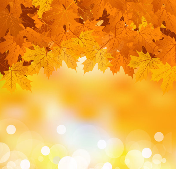 fall of maple leaf elements background vector 06 free download