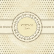 Link toVintage lace background vector 03