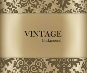 Vintage lace background vector 04