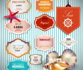 pearls and seashells elements label vector 01