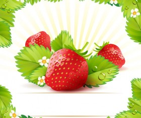 Fresh strawberry elements background vector 01