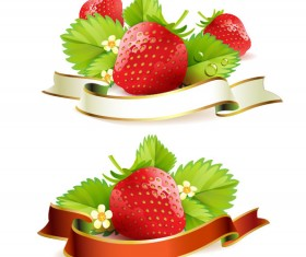 Fresh strawberry elements background vector 03