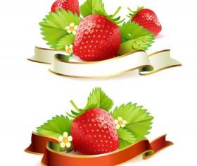 Fresh strawberry elements background vector 03