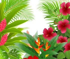 tropical Green leaf elements vector background 02