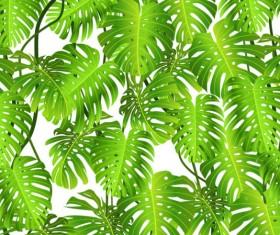 tropical Green leaf elements vector background 03