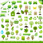 Link toEco with bio elements of stickers and icon vector 01
