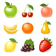 Link toElements of various glossy fruit vector 01