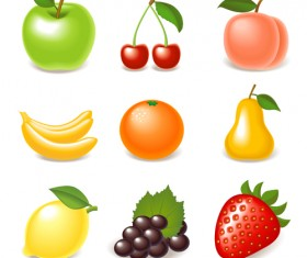 Elements of Various Glossy fruit vector 01