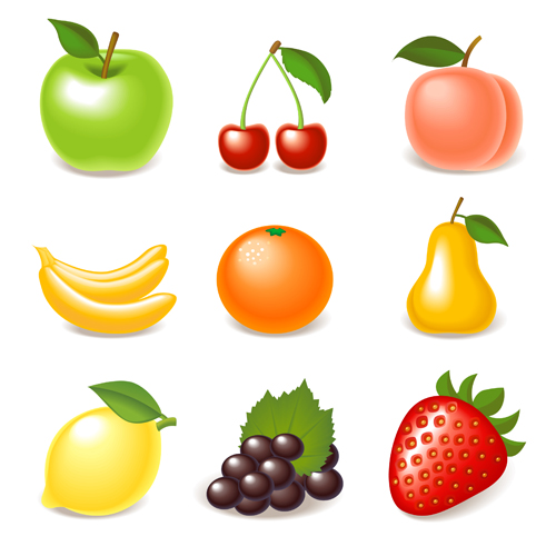 ... of Various Glossy fruit vector 01 - Vector Plant free download
