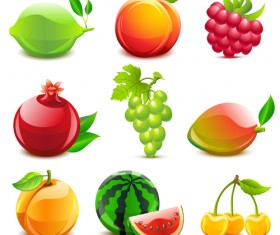 Elements of Various Glossy fruit vector 02