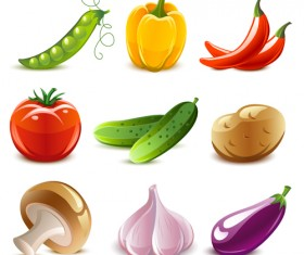 Elements of Various Glossy fruit vector 04