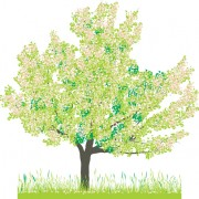 Link toDifferent spring tree elements vector 03