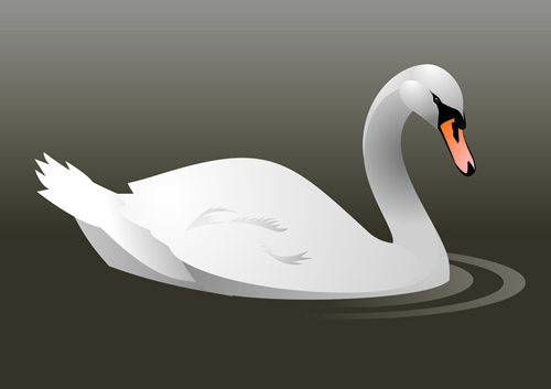 Vivid swans elements vector 01