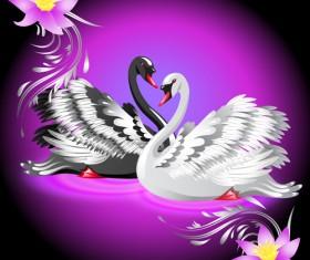 Vivid swans elements vector 04