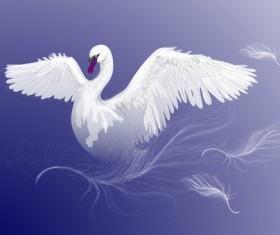 Vivid swans elements vector 05