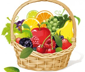 Vivid Fresh vegetables and fruits vector 04