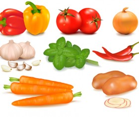 Set of Different Vegetable mix vector 02