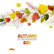 Link toAutumn leaves elements background vector set 04