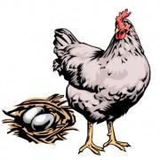 Link toElements of hen with egg design vector