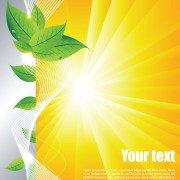 Link toSummer sun and green leaves vector background set 02