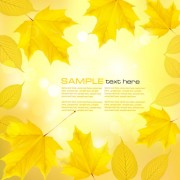 Link toAutumn of maple leaf vector background set 01