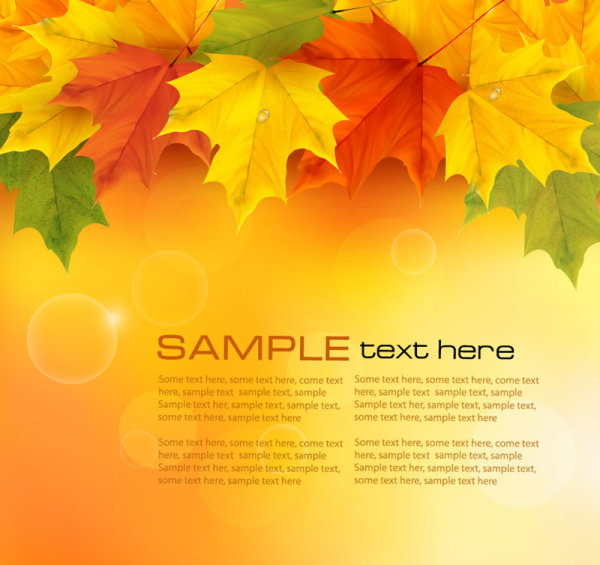 Free eps file autumn of maple leaf vector background set 05 download