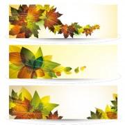 Link toBright leaves banner design vector set