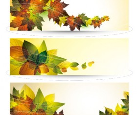 Bright leaves banner design vector set