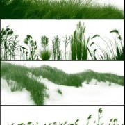 Link toGrass brushes for photoshop