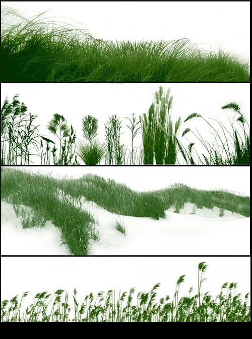 grass brushes for photoshop free download