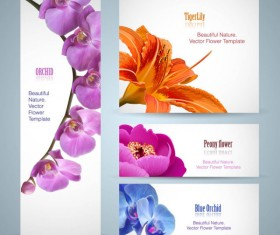 Vivid with flower banner design vector 01